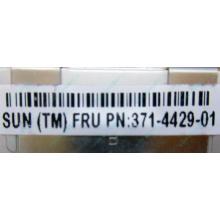 Серверная память SUN (FRU PN 371-4429-01) 4096Mb (4Gb) DDR3 ECC в Орехово-Зуеве, память для сервера SUN FRU P/N 371-4429-01 (Орехово-Зуево)