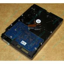 HDD 500Gb Hitachi HDS721050DLE630 донор на запчасти (Орехово-Зуево)